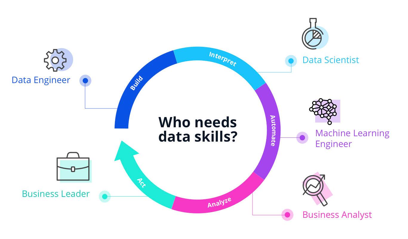 data skills infographic